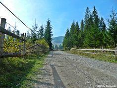 Apuseni Natural Park Natural Park, Sidewalk, Country Roads, Mountains, Nature, Travel, Walkway, Voyage, Viajes