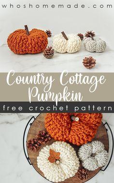 Crochet Fall Decor, Crochet Decoration, Holiday Crochet, Crochet Home, Diy Crochet, Crochet Crafts, Crochet Projects, Crochet Things, Yarn Projects