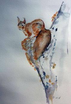 aquarelle, écureuil