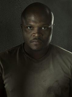 The Walking Dead Season 3 Portraits, T-Dog