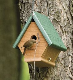 Going Green Wren Birdhouse | Birdhouses | Attract more wrens to your backyard habitat with this durable, eco-friendly birdhouse.