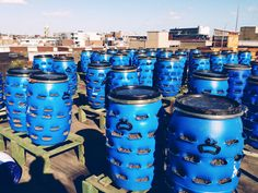 repurposed blue barrels for composting planters - City Composting Ltd, on top of the Chococolate Factory