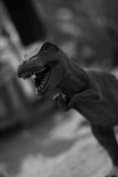 Este dinosaurio se la pasa en el patio de la casa, generalmente está sobre uno de los árboles de limón.  Su origen se remonta a un tiempo en que John Diaz vino a visitar a la familia en la colonia Arcoiris en Hermosillo, Sonora, México. Trajo muchas cosas, este dinosaurio una de ellas, aquí se quedó y sigue viviendo en el jardín,