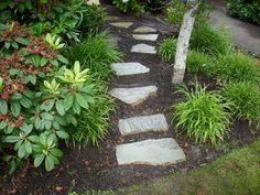 ITS an icing on a cake to have a beautiful garden stone pathway outside our house .THE pathways are of different types made of small stone with grass surrounde , or even large bricks or even glass made pathways . THE stones are fixed in such a wat=y that it really looks beautiful to seeRead more