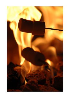 Roasting marshmallows in a fire
