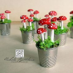 Thimble Fairy Garden with Three Red Spotted by PixieHillStudio #miniaturefairygardens #gardeningwithcontainers