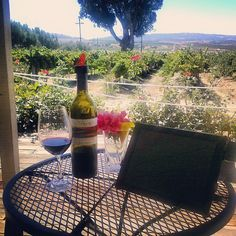 """Another day at the """"office"""" working at Darcie Kent Vineyards"""