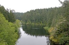 Whistle Lake  Anacortes, Wa - favorite place as a kid to hike into during the summer for a quick dip and cliff jumping!