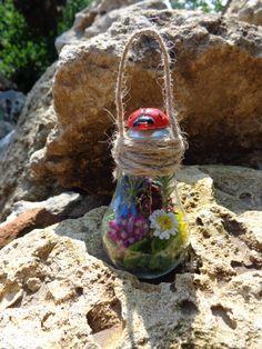 """Mini sera ,Herba""""   - Decoratiuni-Vara (1 LEI la carmenn.breslo.ro)"""