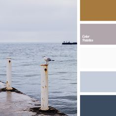 Color Palette #1723