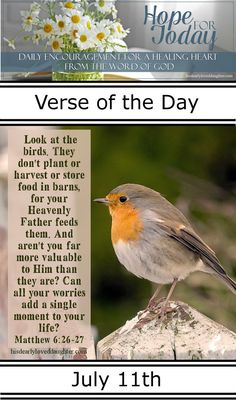 Look at the birds. They don't plant or harvest or store food in barns, for your Heavenly Father feeds them. And aren't you far more valuable to Him than they are? Can all your worries add a single moment to your life? Matthew 6:26-27 #HopeForToday #verseoftheday #BibleStudy #WordOfGod #truth #Scripture #verses #bible