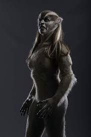 female wolf from Wolves Female Werewolves, Vampires And Werewolves, Fantasy Creatures, Mythical Creatures, Dark Fantasy, Fantasy Art, Wolf Movie, Merritt Patterson, Werewolf Girl