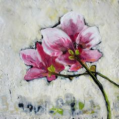 Magnolias | Flickr