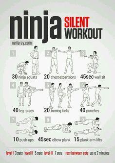 Ninja silent workout
