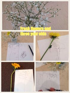 Sketching/drawing flowers