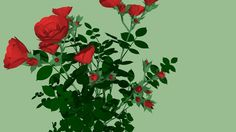 Large preview of 3D Model of ROSE