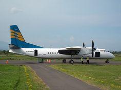 Bandara Blimbingsari memang bukanlah bandara besar, melainkan hanyalah bandara kecil yang memang bisa dibilang sekelas dengan bandara-bandara perintis. Tidak banyak penerbangan dari Bandara Blimbingsari. Dalam seminggu hanya ada 4 kali penerbangan ke Surabaya oleh Merpati dengan pesawat MA60. Dulu ada Sky Aviation ke Surabaya dan Denpasar.