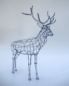 surgeries: Wire Sculpture: Royal Stag in wireframe (by polly verity)