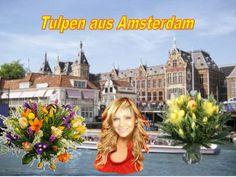 Tulpen Aus Amsterdam by Gyula Dio  via slideshare