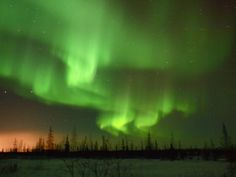 Around this time last year, I was braving the true Arctic tundra in Churchill, Manitoba, to chase and photograph the elusive Northern. Vietnam, See The Northern Lights, Iceland Travel, Once In A Lifetime, Canada Travel, Helsinki, Levis, Adventure Travel, Disneyland