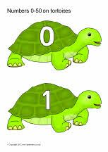 Numbers 0-50 on tortoises