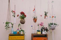 Des plantes à accrocher