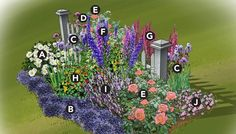 A. Shasta daisy (Leucanthemum x superbum), Zones 4-9 B. Lobelia, annual C. Bearded iris (Iris x germanica), Zones 3-10 D. Brazilian verbena (Verbena bonariensis), Zones 7-11, or annual E. Rose (Rosa spp.), Zones 5-9, depending on cultivar F. Delphinium 'Pacific Giant', Zones 3-7 G. Foxglove (Digitalis purpurea), biennial Zones 4-9 H. Nasturtium (Tropaeolum majus), annual I. English lavendar (Lavandula angustifolia), Zones 5-8 J. Vinca (Catharanthus roseus), annual