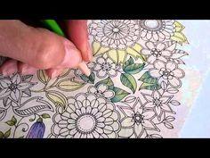 Colouring Secret Garden With Bruynzeel Super Sixties Pencils