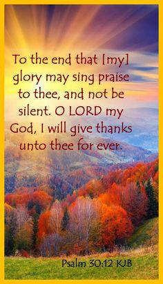 Psalm 30:12 KJB