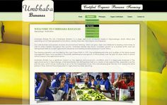 WEB DESIGN >> Umbhaba Bananas (Mpumalanga) Created by Design so Fine Website Designs, Bananas, Web Design, Design Web, Design Websites, Banana, Fanny Pack, Website Layout, Site Design
