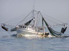 Fishing trawler out of Belhaven, NC.     http://1.bp.blogspot.com/_9JOWqH3Cbrs/TEhtnV1pSzI/AAAAAAAAAvw/3DlgqFmSlkw/s1600/shrimp_boat.jpg