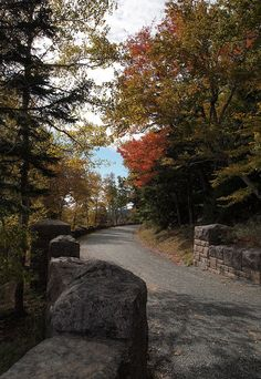 to explore on bicycle, Carriage Road in Arcadia National Park, Maine