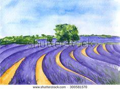 Lavender field. Provance, France. Watercolor. - stock photo