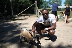Ménager la chèvre et le chou