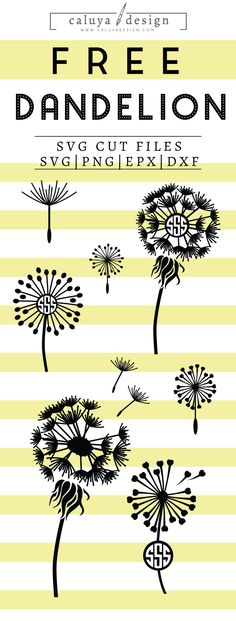 FREE Dandelion Monogram SVG cut file, Printable vector clip art download. Free printable clip art. Compatible with Cameo Silhouette, Cricut explore and other major cutting machines. 100% for personal use, only $3 for commercial use. Perfect for DIY craft project with Cricut & Cameo Silhouette, card making, scrapbooking, making planner stickers, making vinyl decals, decorating t-shirts with HTV and more! Dandelion SVG Cut File, Free SVG Cut File, Free Dandelion Monogram SVG for cricut