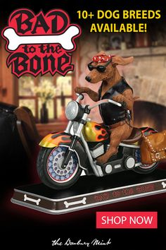 Good Pic Bad to the Bone Dachshund Sculpture Suggestions How Are Pets Given Fundamental Obedience Training ? It includes probably the most fundamental direc Dog Training Certification, Dog Training Camp, Therapy Dog Training, Dog Training Treats, Therapy Dogs, Training Pads, Training Collar, Agility Training, Training Academy