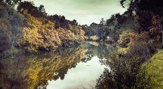 Yarra River tones by andycheyne79 on 500px