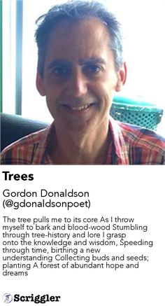 Trees by Gordon Donaldson (@gdonaldsonpoet) https://scriggler.com/detailPost/story/54489 The tree pulls me to its core As I throw myself to bark and blood-wood Stumbling through tree-history and lore I grasp onto the knowledge and wisdom, Speeding through time, birthing a new understanding Collecting buds and seeds; planting A forest of abundant hope and dreams