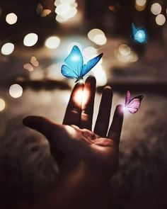 aesthetic, aesthetics, and beautiful image Cute Wallpaper Backgrounds, Love Wallpaper, Pretty Wallpapers, Colorful Wallpaper, Galaxy Wallpaper, Blue Butterfly Wallpaper, Butterfly Art, Girly Pictures, Beautiful Pictures