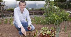 Grow it your self GIY Ireland - Weareobeo