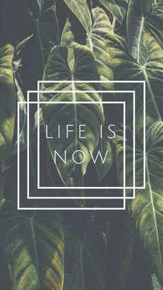 Life is Now Quote iPhone 7 Plus Wallpaper / Tap to download for free! Love Preppy XXX