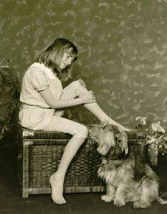 http://Amazon.com: The of #Dogs Documentary: AGJR 🏰 🐩 http://rite.ly/KCVK  #Documentary #prime