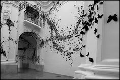black butterfly instalation - Pesquisa Google