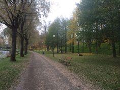 Autumn in Finland Finland, Country Roads, Autumn, Nature, Naturaleza, Fall Season, Fall, Nature Illustration, Off Grid