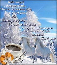 Horses, Happy, Animals, Animales, Animaux, Ser Feliz, Animal, Animais, Horse