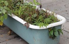 Reuse Bathtubs- Planter