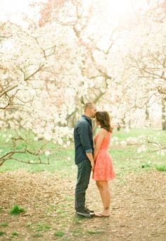 Cherry Blossoms in Central Park | photography by http://www.lindsaymaddenphotography.com