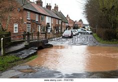 March becks in the villages of Oxton ,and Gonalston have burst their - Stock Image Buy Now, Bears, March, Stock Photos, Image, Bear, Mac