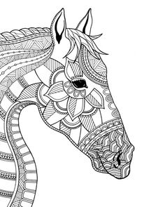 Horse illustration coloring page by Drawpaint Illustration