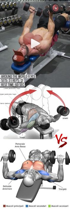 Weight training workouts - How to Around the World Flys👇 Flys inhand world Chest Workouts, Gym Workouts, Health Benefits, Health Tips, Academia Fitness, Yoga Pilates, Bodybuilding, Weight Training Workouts, Health Motivation